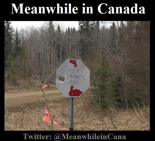 Meanwhile in Canada.jpg