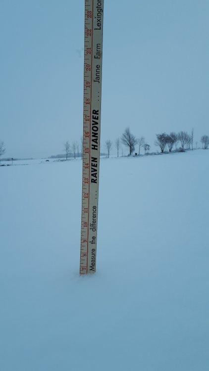 SnowMay112020745AM.jpg